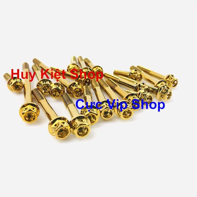 Bộ Ốc Máy Vương Miện Vàng Cho Xe Exciter 135 MS2156
