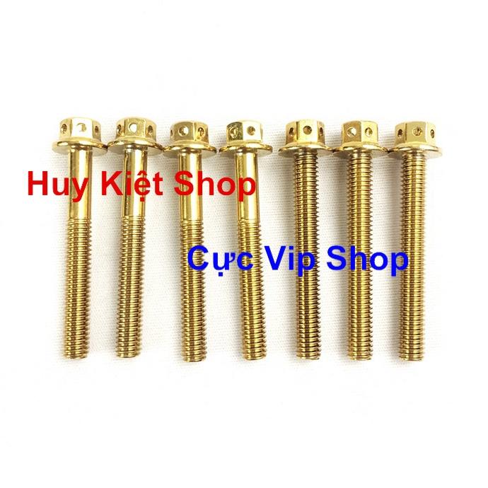 Bộ Ốc Máy Vương Miện Vàng Cho Xe Vario MS2164